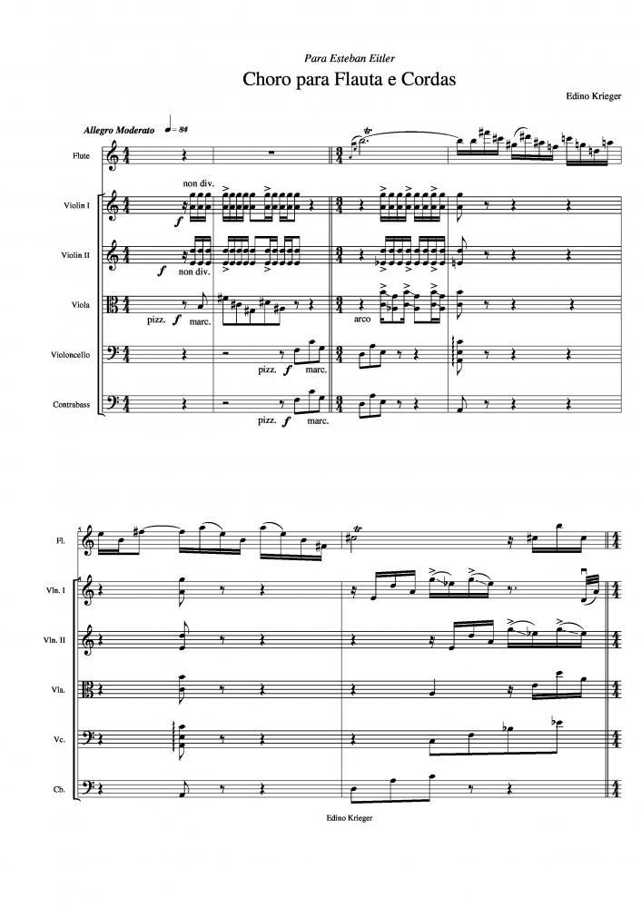 Choro para flauta e cordas