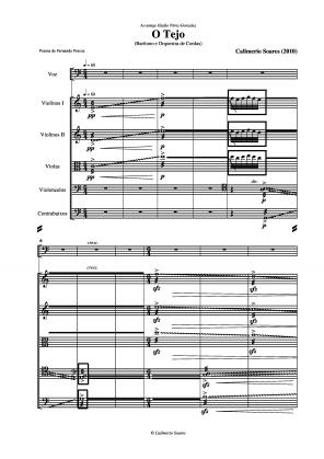O Tejo para barítono e orquestra de cordas (2010)